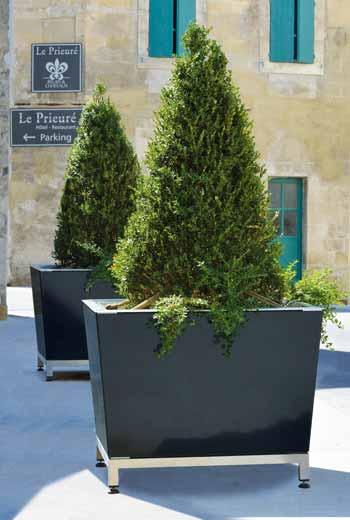 Area - Bac d'orangerie - Kobé
